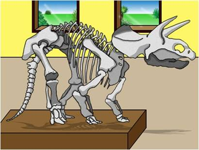 Young Scientists, Old Bones Subject Image