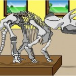 FasTrack Camps - Young scientists Old Bones