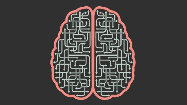 brain map blog image